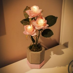 Cutie Rose Pot LED lights
