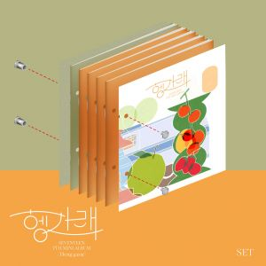 [Seventeen] - Mini Album Vol.7 [Heng : garae] (SET Ver.)